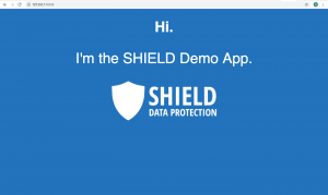 From the Interns: Getting SHIELD up and Running via Docker